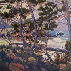 Whispering Pines, Whaler's Cove, Point Lobos