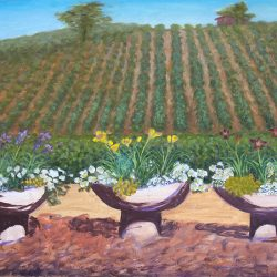 View of the Vineyards from the Amador Flower Shop
